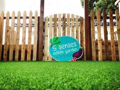 Read more about the article 5 Senses Edible Garden