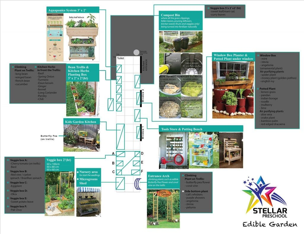 Read more about the article Our Edible Garden